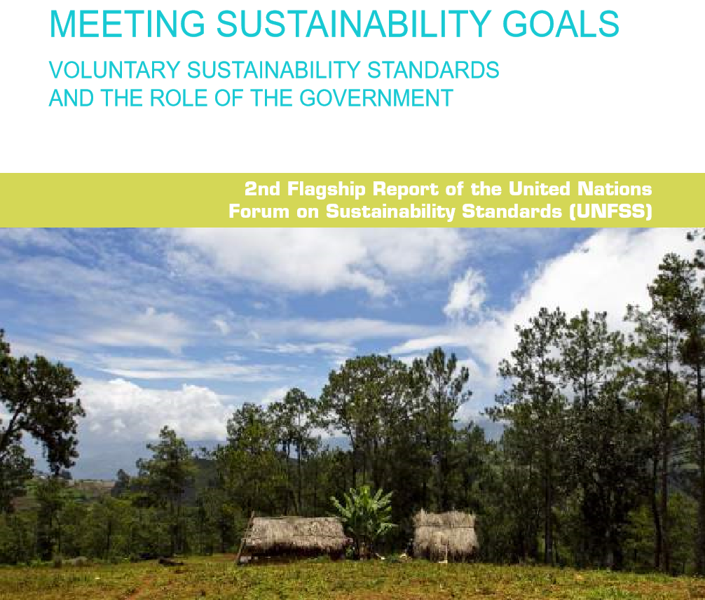 Meeting Sustainability Goals: VSS and the role of the role of the government