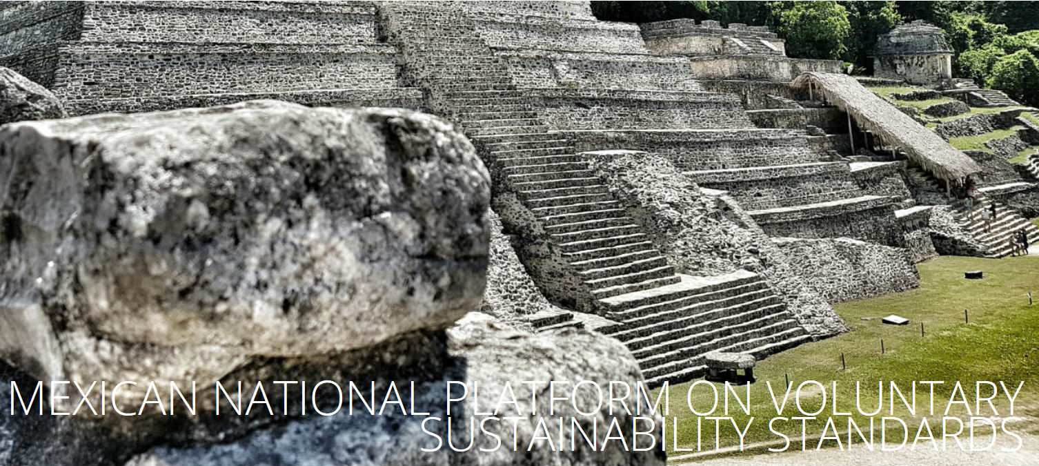 MEXICAN NATIONAL PLATFORM ON VOLUNTARY SUSTAINABILITY STANDARDS